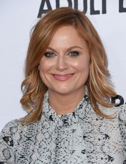 Amy Poehler wore fabulous feathery waves when she attended the 'Adult Beginners' premiere.