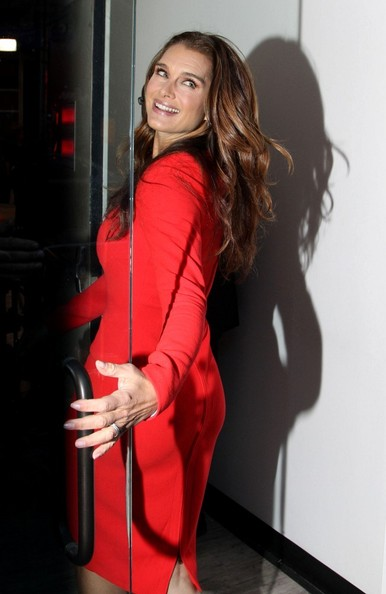 More Pics of Brooke Shields Cocktail Dress (1 of 6) - Brooke Shields Lookbook - StyleBistro
