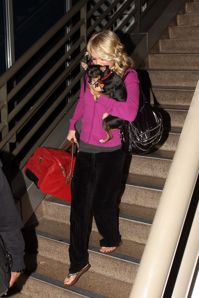 Carrie uses this bright red dog carrier to get her best friend through LAX.