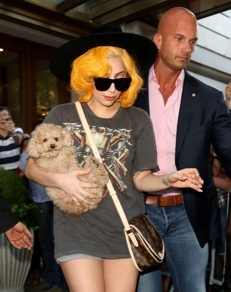 Lady Gaga Printed Shoulder Bag