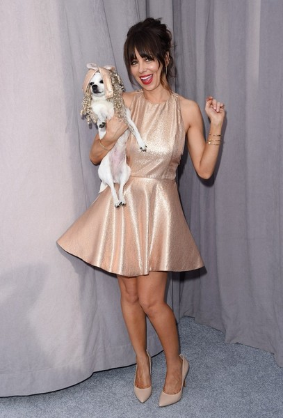 Natasha Leggero Mini Dress