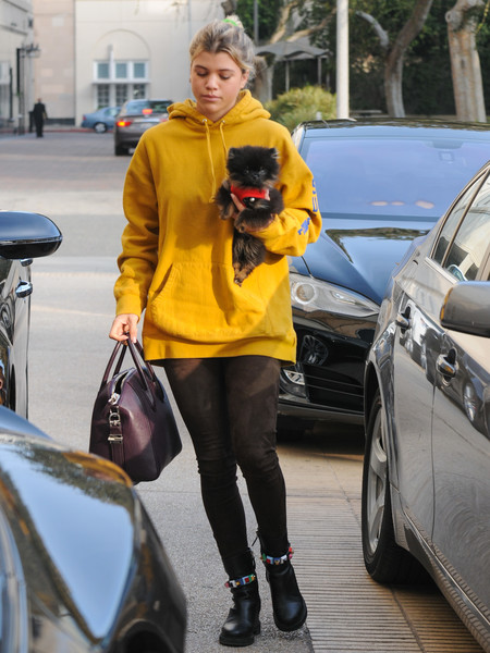 Sofia Richie's arm candy for the day was a dark-plum Givenchy Antigona.
