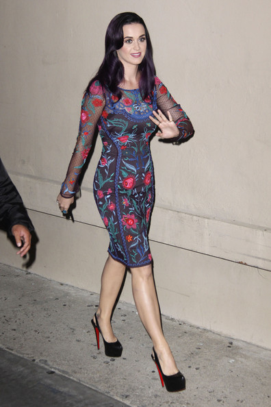 Katy Perry Embroidered Dress []