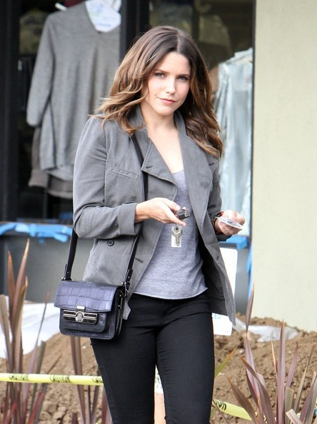 Sophia Bush Handbags