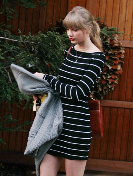 Taylor Swift Handbags