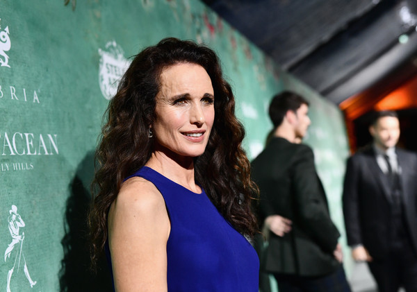 More Pics of Andie MacDowell Knee Length Skirt (1 of 3) - Andie MacDowell Lookbook - StyleBistro [women in film pre-oscar cocktail party,premiere,fashion,event,carpet,long hair,dress,little black dress,red carpet,brown hair,smile,11th annual women in film pre-oscar cocktail party,stella artois,johnnie walker,andie macdowell,support,crustacean beverly hills,max mara,lancome,red carpet]