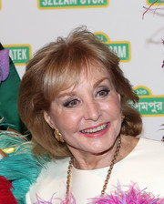Barbara Walters looked elegant with her poofy bob at the 2014 Sesame Workshop benefit.