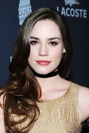 Christa B. Allen wore a muted raspberry lipstick at the 14th Annual Costume Designers Guild Awards.