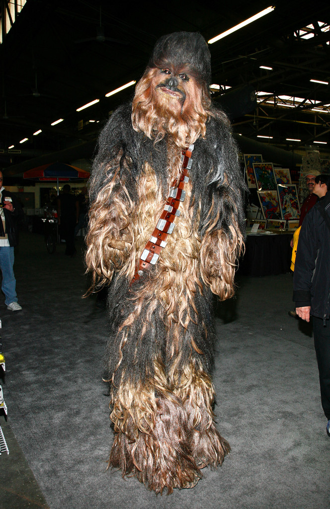 Chewbacca Costume Cheap And Easy Celebrity Halloween
