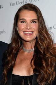 Brooke Shields wore her hair in a waterfall of waves at the 2017 Tribeca Ball.
