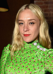 Chloe Sevigny sported a hippie hairstyle at the 2017 Tribeca Film Festival after-party.