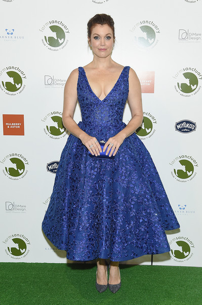 Bellamy Young looked gorgeous in an embroidered royal-blue dress by Michael Cinco at the 2018 Farm Sanctuary on the Hudson Gala.