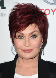 Sharon Osbourne looked cool and glam with her razor cut at the 2014 Environmental Media Awards.