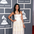 Anoushka Shankar at the Grammy Awards 2013