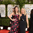 On the Red Carpet Before the 71st Annual Golden Globes