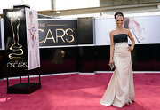 Shaun Robinson opted for a classic look at the 2013 Oscars red carpet with this black and white strapless gown.