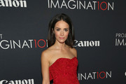 Abigail Spencer Strapless Dress