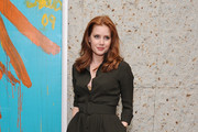 Amy Adams Shirtdress