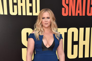 Amy Schumer Form-Fitting Dress