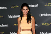 Angie Harmon Crop Top