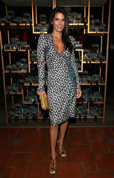 Angie Harmon Wrap Dress