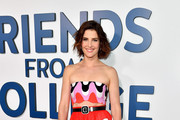 Cobie Smulders Full Skirt