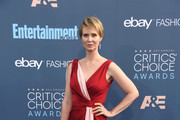 Cynthia Nixon Wrap Dress