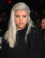 Sofia Richie wore her ice-blonde hair down with braided sides when she attended the DKNY fashion show.