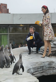 Princess Mary looked elegant while feeding the penguins in a pair of dove gray pumps. Quite the brave shoe choice for the occasion!