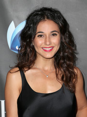 Emmanuelle Chriqui looked pretty with her loose curls at the Elle Women in Comedy event.
