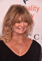 Goldie Hawn sported her signature flippy waves and eye-grazing bangs at the Make Equality Reality Gala.