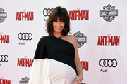 Evangeline Lilly Maternity Dress