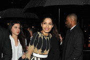 Freida Pinto Form-Fitting Dress
