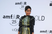 Freida Pinto Is Lovely in Lanvin at amfAR's Cinema Against AIDS Gala