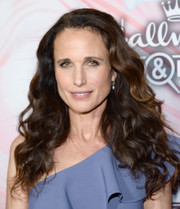 Andie MacDowell showed off luxuriant curls at the Hallmark Channel Winter TCA Press Tour.