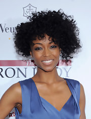 Yaya DaCosta wore her hair in a lovely mass of voluminous curls at the NYC premiere of 'The Iron Lady.'