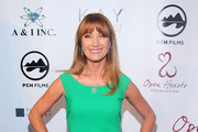 Jane Seymour Evening Dress