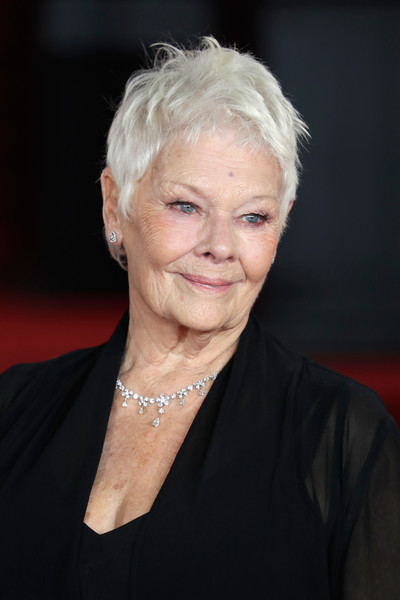 Judi Dench Messy Cut [murder on the orient express,person,human hair color,blond,lady,chin,hairstyle,smile,official,portrait,red carpet arrivals,judi dench,person,pixie cut,human hair color,hairstyle,royal albert hall,england,world premiere,judi dench,m,casino royale,actor,hairstyle,image,artist,james bond,pixie cut]