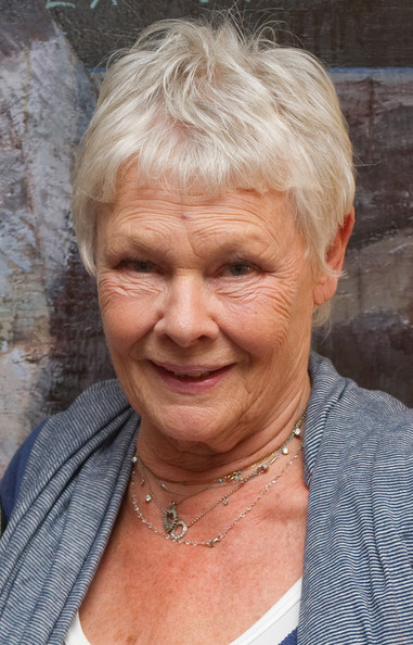 Judi Dench Pixie [friend request pending,face,hair,wrinkle,skin,chin,head,forehead,nose,grandparent,human,judi dench,screening,london,england,soho hotel,screening]