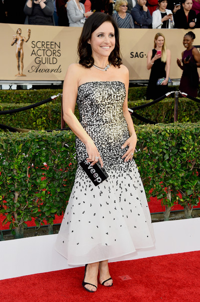 Julia Louis-Dreyfus Box Clutch [red carpet,dress,clothing,carpet,shoulder,strapless dress,premiere,fashion model,flooring,fashion,arrivals,julia louis-dreyfus,screen actors guild awards,los angeles,california,the shrine auditorium]