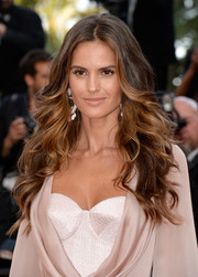Izabel Goulart rocked an ultra-glam feathered flip at the Cannes premiere of 'Julieta.'