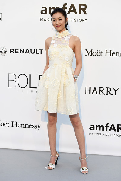 Liu Wen Cocktail Dress