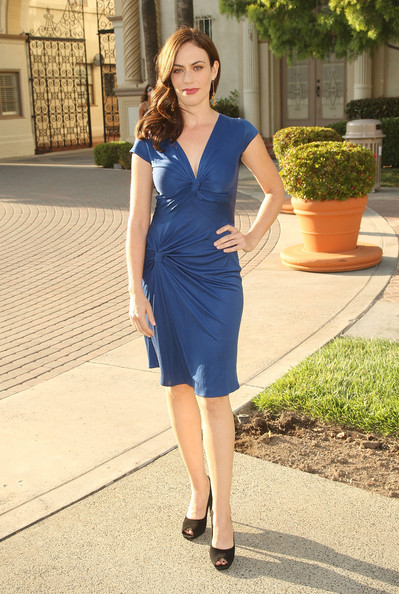 Maggie Siff Day Dress