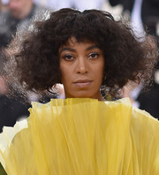 Solange Knowles rocked messy curls at the Met Gala.