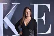 Marcia Gay Harden Wrap Dress