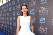 Marion Cotillard Evening Dress