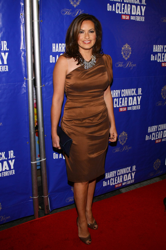 Mariska Hargitay One Shoulder Dress Mariska Hargitay