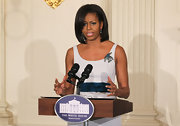Michelle Obama adorned her dress with a beautiful gemstone brooch shaped like a bird during the press preview of a White House State Dinner.