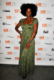 Kim Wayans was all smiles wearing a print maxi dress as she posed for a shot at the Toronto premiere of 'Pariah.'