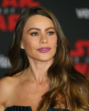 Sofia Vergara attended the premiere of 'Star Wars: The Last Jedi' wearing a loose wavy hairstyle.
